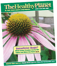The Healthy Planet August 2016