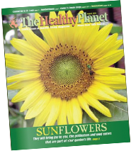 The Healthy Planet August 2019