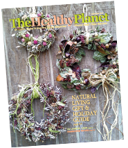 The Healthy Planet December 2015