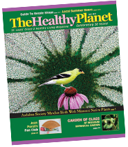 The Healthy Planet July 2017
