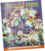The Healthy Planet November 2018