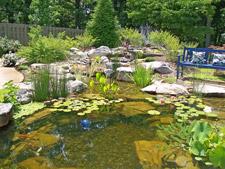 Pond-O-Rama