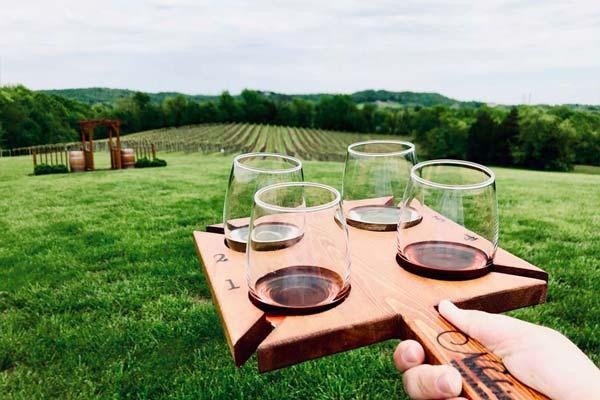 Noboleis Vineyards Wine Tastings Weddings