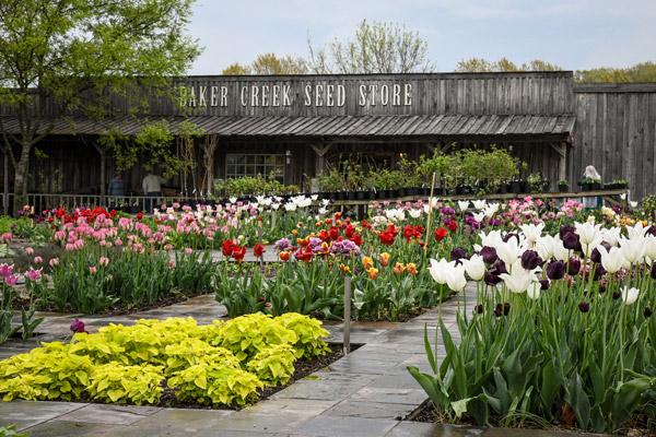 Baker Creek Heirloom Seed Company