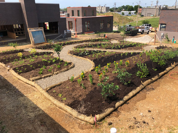 Urban Food Forest Grand Center Arts District